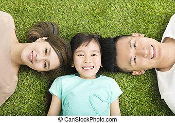 família feliz, topo, jovem, capim, mentindo, vista