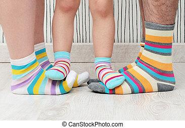 família, meias