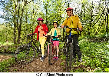 família, parque, primavera, ensolarado, bicicleta, viagem