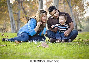 família, parque, raça, étnico, misturado, bolhas, tocando, feliz