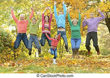 família, relaxante, em, outono, parque