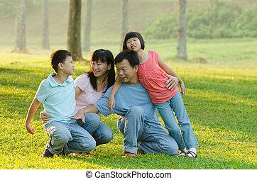 família, sendo, outddor, brincalhão, sorrindo, ao ar livre, retrato, mentindo