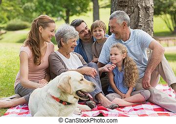 famiglia estesa, con, loro, coccolare, cane, seduta, a, parco