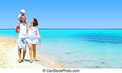 famiglia, giovane, divertimento, felice, spiaggia, detenere, vista