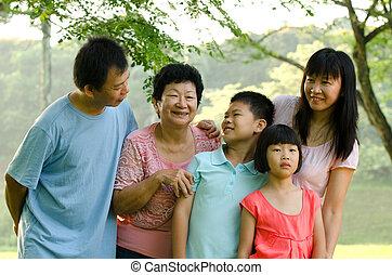 famiglia, posizione sorridente, fuori, esteso