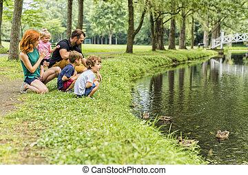 famiglia, waterscape, esso, anatra, chiudere, bambini