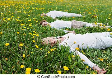 familia , acostado, en, herboso, campo
