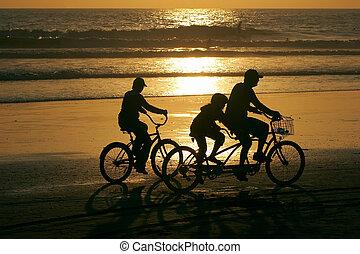 familia , bicicletas de equitación, por, el, playa, en, sunset.