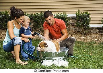 familia , dar, perro, bath.