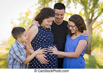 familia , embarazada, aire libre, hispano, park., manos, bebé, sentimiento, madre, patada, barriguita