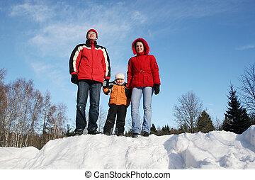 familia , en, invierno, madera