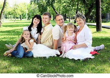 familia extendida, juntos, en el parque