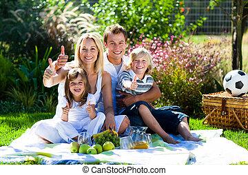 familia feliz, tener un picnic, en, un, parque, con, pulgares arriba