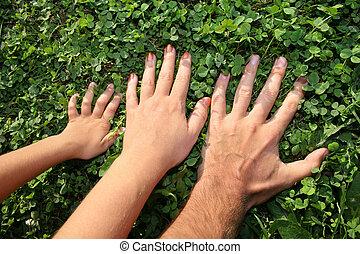 familia , manos, 2