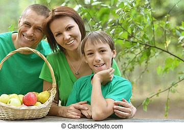familia , merienda campestre que tiene, en, verano, parque