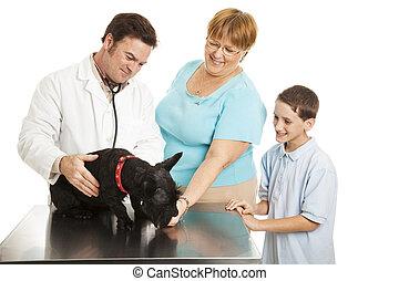 familie, an, der, tierarzt