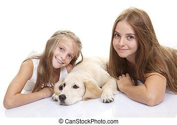 familie haustier, hund, mit, kinder
