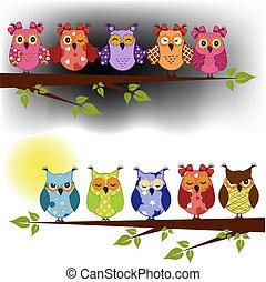 familie, i, ugler, lørdag., på, en, træ branch