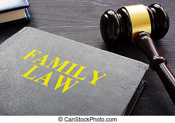 familie, juridisk bog, og, gavel, på, en, desk.