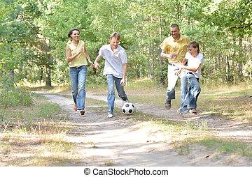 familie, park, porträt, fußball, spielende , glücklich