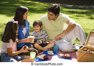 familie, picnic.