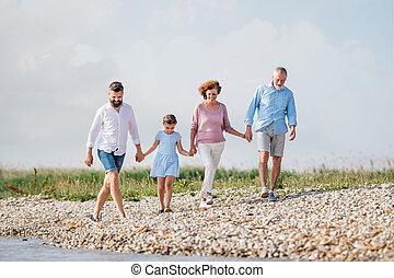 familie vakantie, meer, wandelende, multigeneration, hands., vasthouden