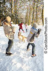 familie, verschneiter , waldland, kampf, schneeball, haben
