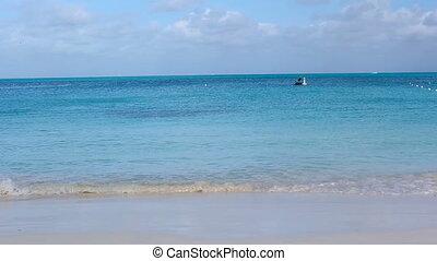 familiedag, wit strand, hebben, vrolijke