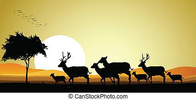 familj, silhuett, hjort
