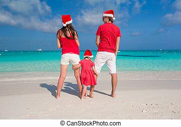 famille, chapeaux, amusant, plage blanche, noël, heureux