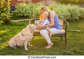 famille, ensoleillé, chien, day., leur, jouer, heureux