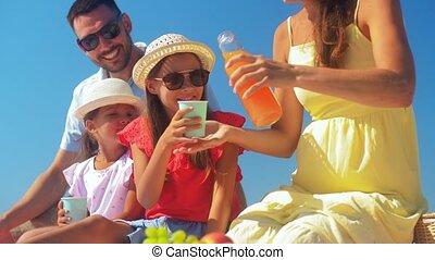 famille, heureux, été, avoir pique-nique