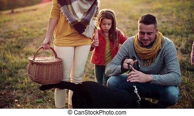 famille, jeune, nature., deux, chien, automne, petit, promenade, enfants