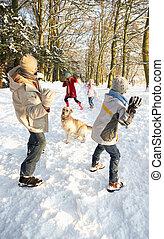 famille, neigeux, pays boisé, baston, boule de neige, avoir