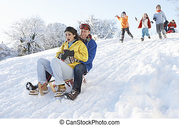 famille, regarder, couple, jeune, bas colline, sledging