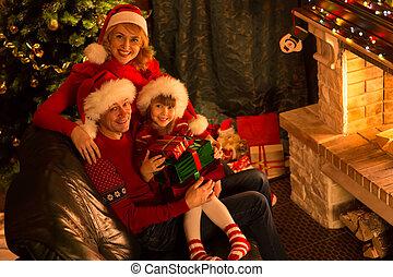 famille, séance, chapeaux, arbre, dons, cheminée, noël, rouges, heureux