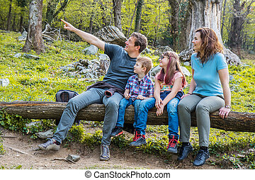 famille, séance, forêt arbre, coffre, heureux