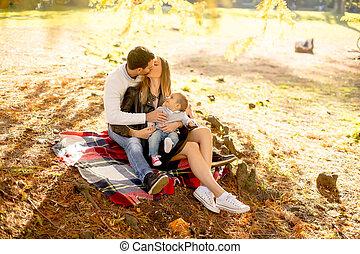 famille, séance, parc, jeune, automne, terrestre