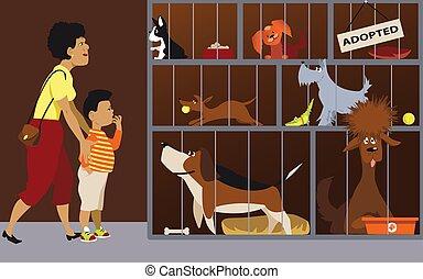 Family adopting a dog