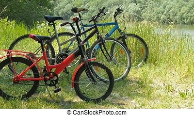 Family bicycles on the nature.