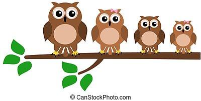 family bird on branch