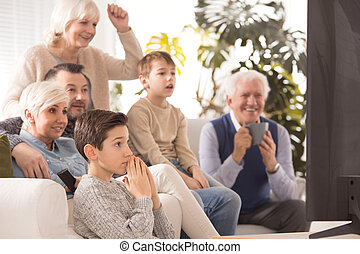 Family cheering a team