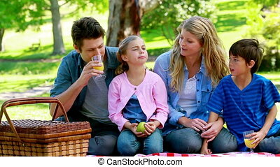 Family drinking orange juice in a park