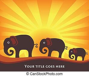 family., elefante