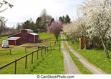 Family farm in rural Oregon. - Family farm in Spring in...