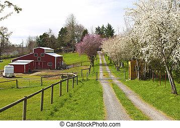 Family farm in rural Oregon. - Family farm in Spring in...