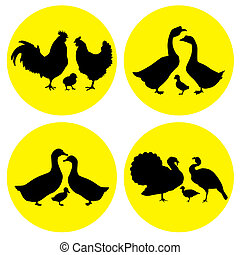 vector family of birds living on farms in the yellow circles on a white background