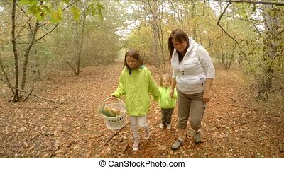 Family gathers mushroom in the forest