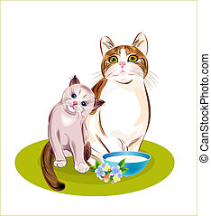 family., gatto, eat., andare, gattino, gatti