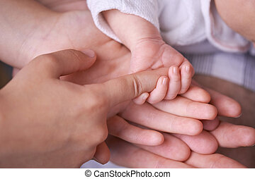 Family hands - Family concept. Four hands of the family:...